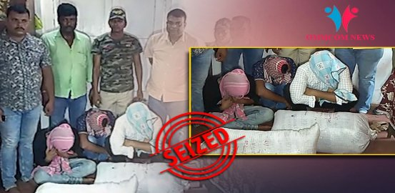 Ahead of Phase-IV Polls, 3 Engineering Students Held With 32 kg Ganja In Odisha's Cuttack