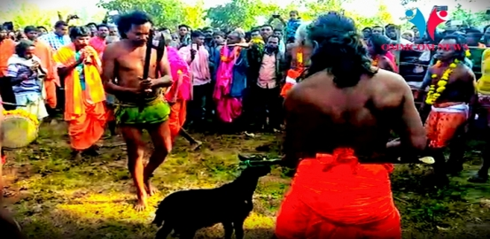 Sulia Jatra: Animal Sacrifice Continues Year After Year In Name of Rituals