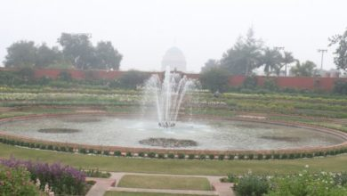 Photo of Mughal Gardens To Shut For Public On Day 2 Of Trump's Visit
