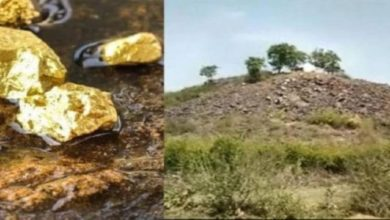 Photo of Sonbhadra Gold Reserve: How Did The Misinformation Spread?