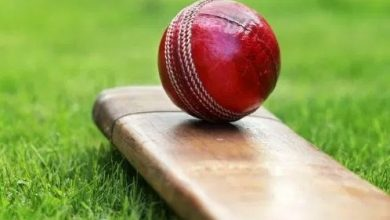 Photo of Andhra To Conduct Its T20 League From Oct 22 In A Bio-Bubble