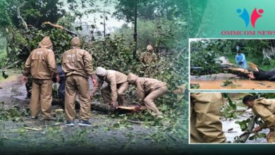 Photo of Odisha Police, Administration Takes Up Challenge To Clean Up Cyclone 'Titli' Mess