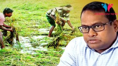 Photo of Farmers Affected By Cyclone Phethai-Triggered Rain Will Be Compensated: Odisha SRC