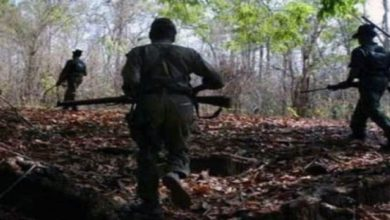 Photo of 7 Maoists Killed In Chhattisgarh Encounter, Weapons Seized