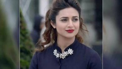 Photo of Divyanka Tripathi Wages Social Media War With Troll