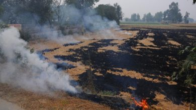 Photo of Stubble Burning Contributes Only 1% To Delhi's Pollution Menace