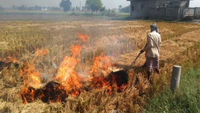 Photo of Stubble Burning Contributing 40% to Delhi's Pollution
