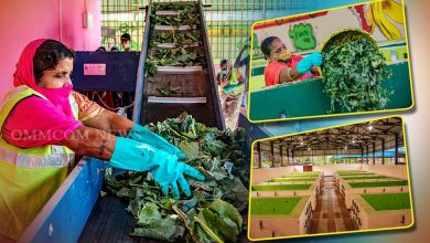 Photo of BMC Targets To Make 11 Micro Composting Centres Functional By Dec 1st Wk