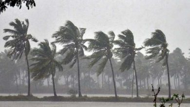Photo of Cyclone Nivar To Intensify Into Severe Storm In 12 Hrs: MHA
