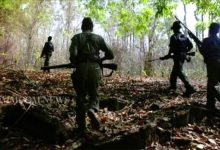 Photo of Maoist Killed In Exchange Of Fire In Malkangiri