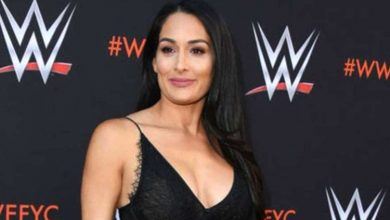Photo of Nikki Bella, Artem Chigvintsev Go For Couples Therapy