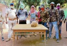Photo of Dhenkanal Forest Squad Busts Pangolin Smuggling Gang; 2 Nabbed, 2 Fleeing