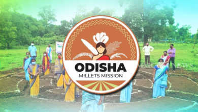 Photo of 'Odisha Millet Mission' & 'Mo Upakari Bagicha' Praised By Niti Aayog