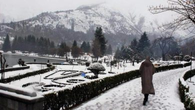 Photo of Weather Improves In J&K, Ladakh After 4 Days