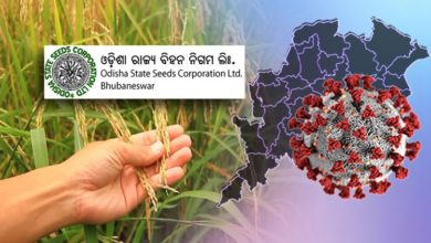Photo of Odisha State Seed Corporation Attains New Heights In Production & Sale Of Seeds