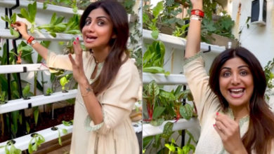Photo of Shilpa Shetty Offers Fans A Glimpse Of Her Hydroponic Farm