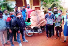 Photo of Deer Skin, Pangolin Scales Seized, 4 Arrested In Dhenkanal