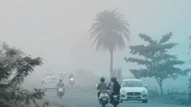 Photo of Dense Fog Alert For 10 Odisha Dists; SRC Issues Advisory For Controlled Plying of Vehicles