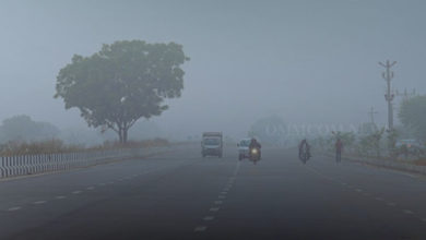 Photo of 7 Places In Odisha Witness Shallow To Dense Fog